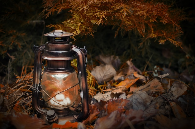 Vintage kerosene lamp lights the autumn leaves and branch of fir.tinted