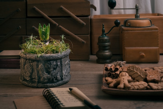 Vintage kitchen interior with hyacinth in flower pot,