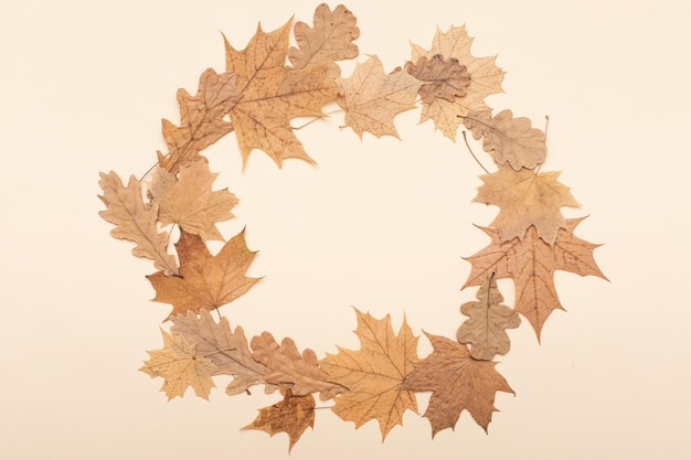 Vintage mockup, border leaves arrangement background. autumn flat lay. fall season concept. thanksgiving flatlay composition.