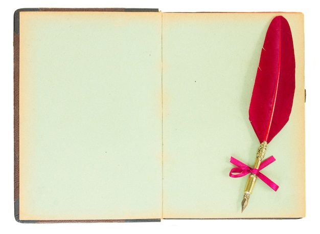 펜 깃털 흰색 절연 빈티지 오픈 책