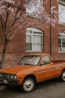 Старинный оранжевый пикап, припаркованный у цветущего дерева
