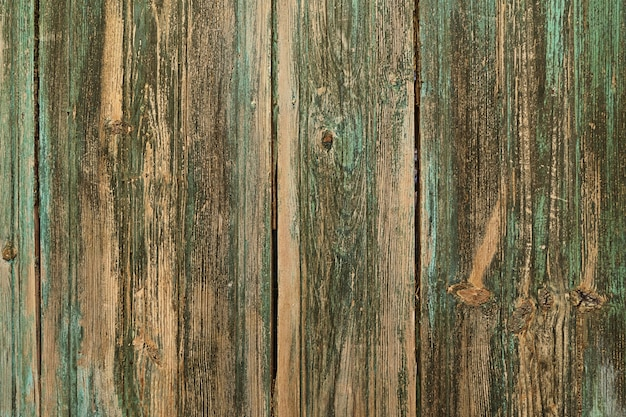 Vintage painted wooden background wall green