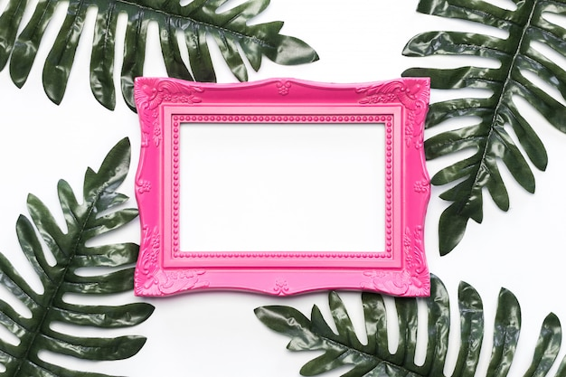 Vintage photo frame with green leafs and white background free photo