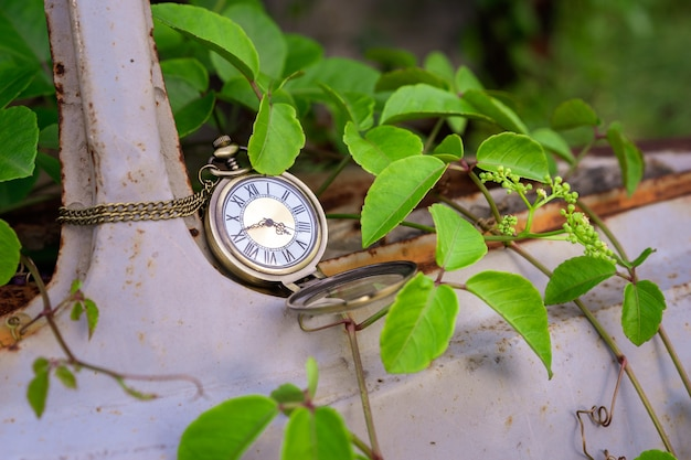 Vintage pocket watch on old car and vine