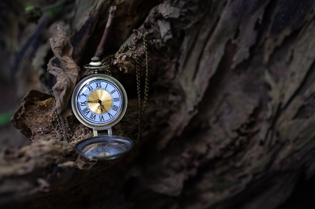 Vintage pocket watch on the old wooden background with copy space