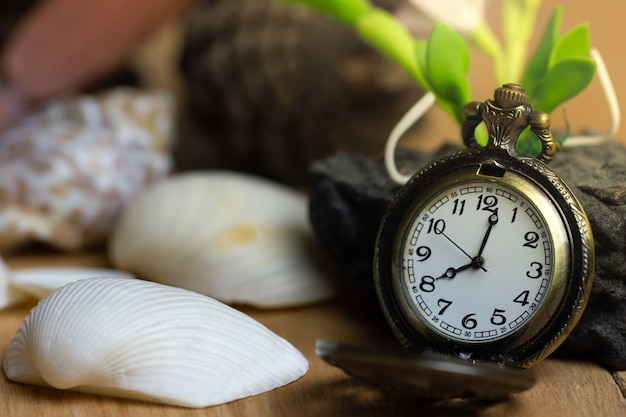 Vintage pocket watch and shell on wood background.
