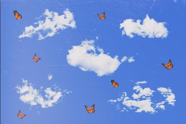 빈티지 엽서입니다. 구름과 비행 오렌지 나비와 하늘입니다.