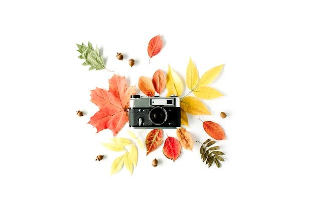 빈티지 레트로 카메라와 가을 가을 도토리, 단풍 나무 잎 꽃 프레임