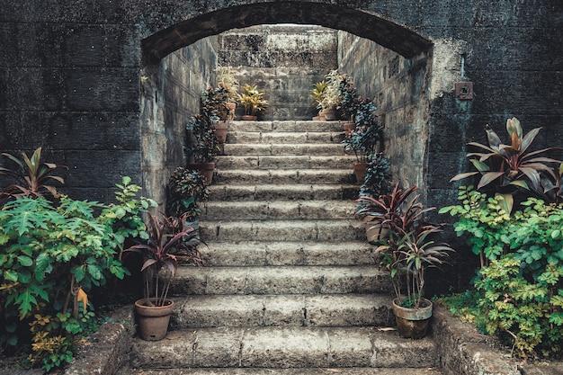 화분에 심은 꽃으로 둘러싸인 빈티지 돌 계단입니다. 동화 같은 풍경 이끼는 측면에 식물과 함께 고대 입구를 덮었습니다. 세련된 아시아 인테리어. 콜라주에 이상적인 배경입니다.