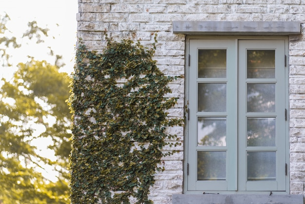 Vintage style window, wall of the house with a closed window left and details.