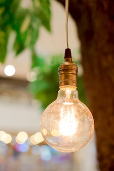 Vintage tungsten lightbulbs hanging on tree with bokeh background