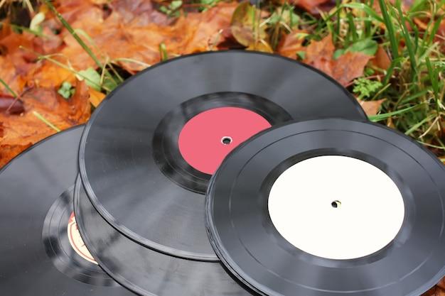 가을 가을에 빈티지 비닐 레코드는 공원에서 배경을 남깁니다.
