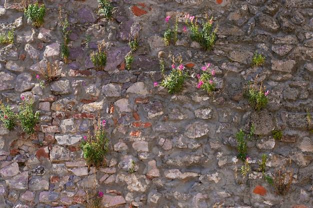 꽃과 빈티지 벽 텍스처