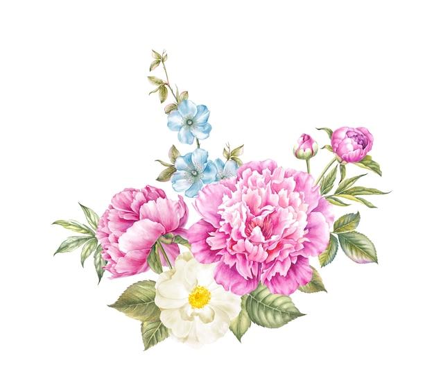 Vintage watercolor botanical illustration of peonies.