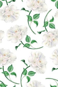 Vintage watercolor pattern with realistic white pink roses