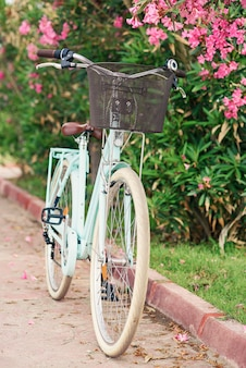 Vintage women's bike near green bushes with flowers