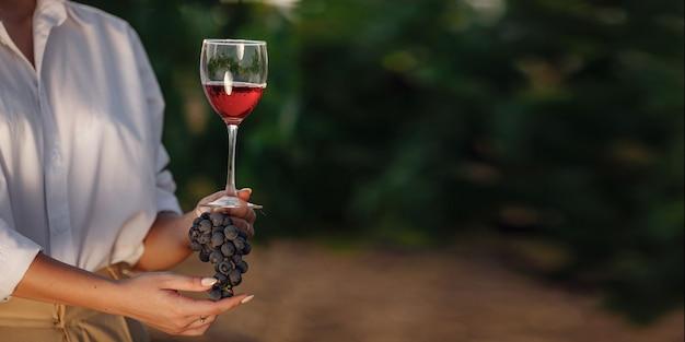 ブドウ園でグラスとブドウから赤ワインを味わうワイン醸造業者の女性。日没時のブドウ園の背景。ワイングラスを持っているソムリエの手のマクロ撮影