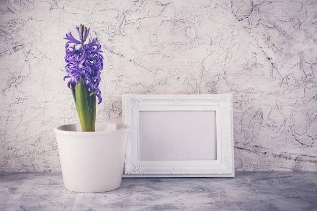 흰 꽃 냄비와 흰색 액자에 보라색 히아신스