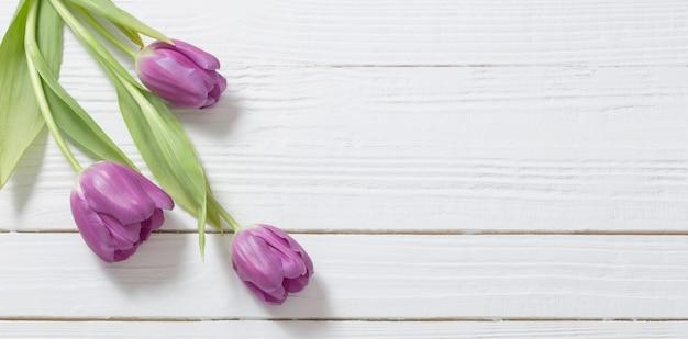 白い木製の背景に紫のチューリップ