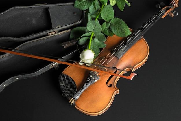 바이올린과 검은 장미.