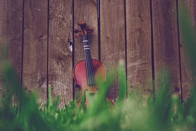 Violin on green grass lying against a wooden fence