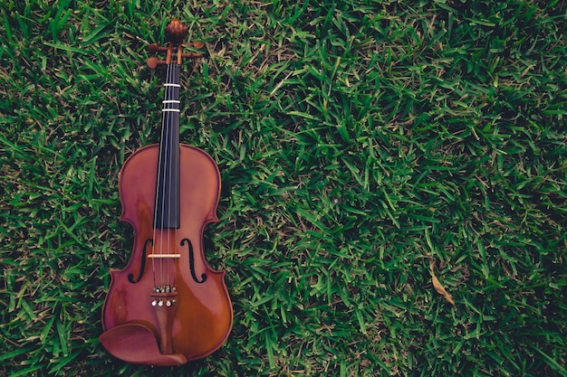 Violin lying on grass background