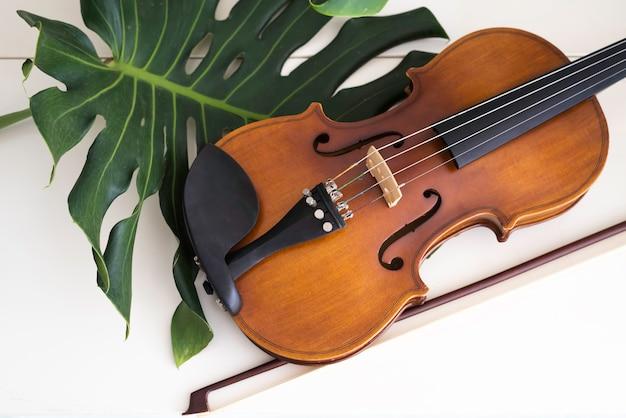 바이올린은 흰색 표면에 녹색 잎 옆에 놓고 어쿠스틱 악기의 앞면을 보여줍니다.