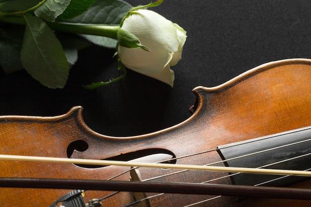 Violin and rose on black .