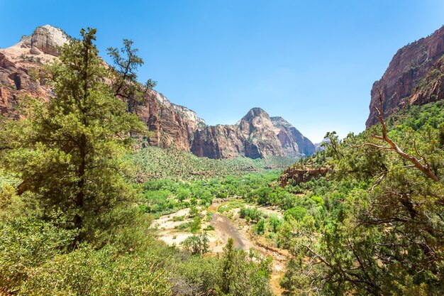 Virgin nature paniramic view of zion national park