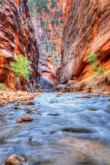 Река вирджиния в национальном парке зайон, юта, юго-запад, сша