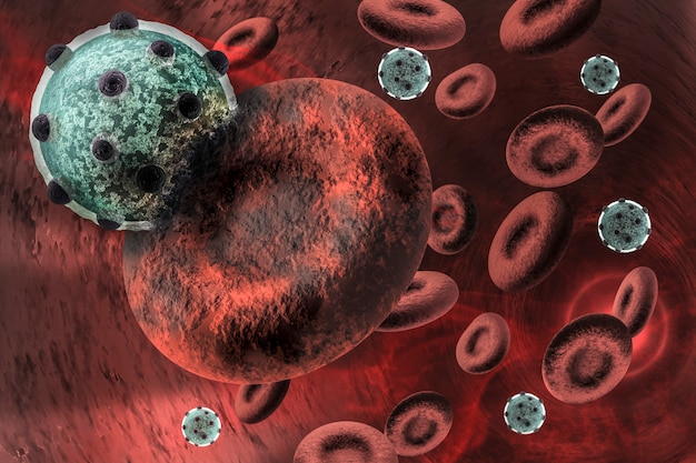 Virus infecting the red blood cell