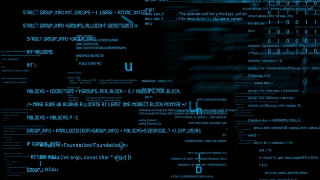 미래 소프트웨어의 비전 프로그래밍 및 코딩