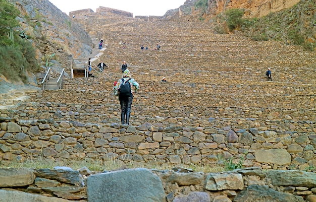 Visitor climbing onto the terraces of pumatallis inside ollantaytambo incas citadel urubamba peru