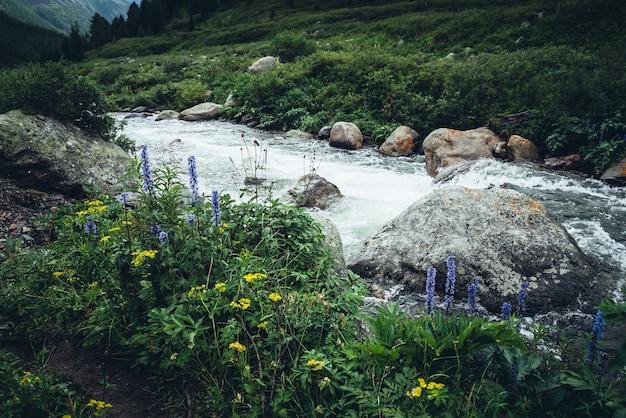 力強い山川の澄んだ水の上に野生の茂みがある鮮やかな美しい風景。マウンテンクリークの透明な水の上にある野生の植物のカラフルな風景。山の野生の植物相。