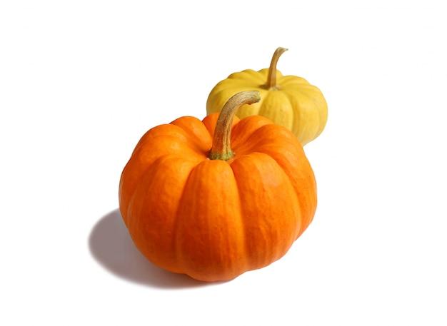 鮮やかなオレンジ色と鮮やかな黄色の熟したカボチャは、白い背景に茎を持つ
