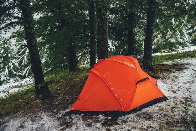 雪に覆われた丘の針葉樹の下にある鮮やかなオレンジ色のテント。丘の中腹にある針葉樹林の雪の中で木の下にテントを張る。山の明るいオレンジ色のテントのクローズアップ。秋の雪の風光明媚な山の風景