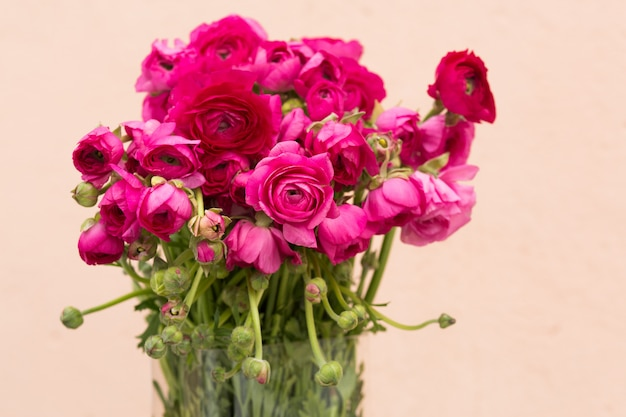 Vivid pink roses background