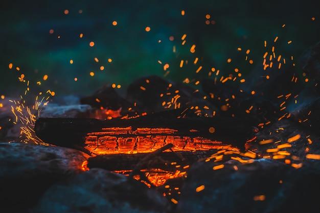 생생한 연기가 나는 장작이 화재 클로즈업에서 탔습니다.