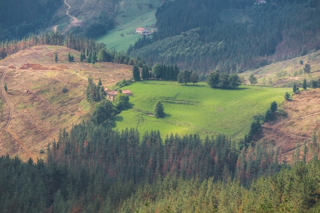 Vizcaya forest and mountain landscape in oiz mount, basque country, spain.