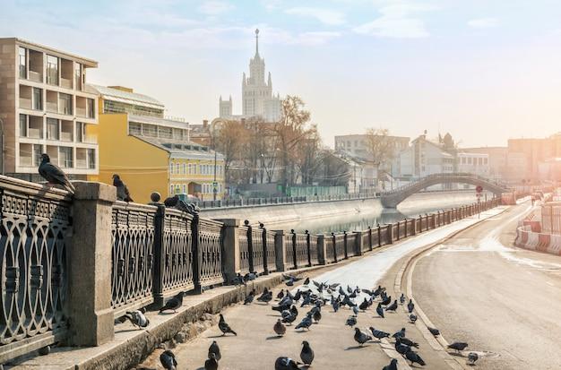 モスクワのvodootvodnoy運河の堤防上の鳥