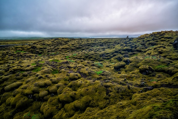 Volcanic ash and lava field in iceland.