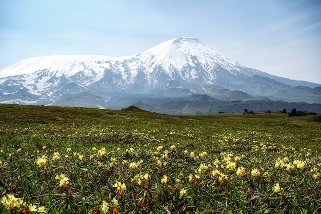 Вулканический ландшафт камчатского полуострова. камчатская обл. популярные туристические направления.