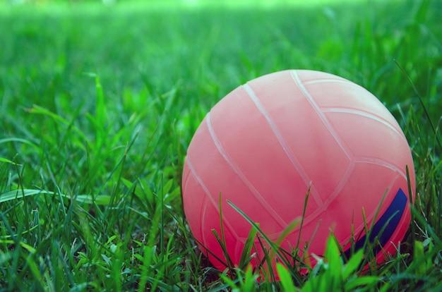 草の上に立っているバレーボールのボール。公園の緑のフィールドにバレーボールのボール