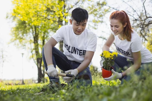 Volunteer with gardening. appealing two volunteers planting flower and looking down