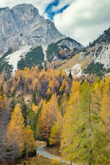 Vrsic pass - alpine road in slovenia surrounded by colorful trees in autumn season