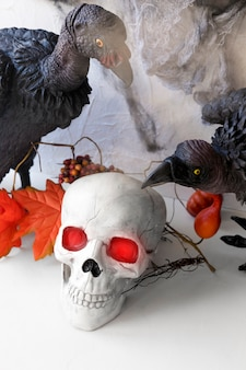 Vultures sitting near skull