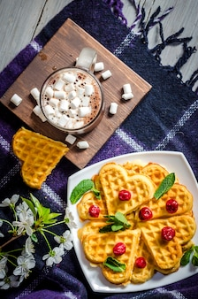 Waffles and hot chocolate with marshmallows on a plaid