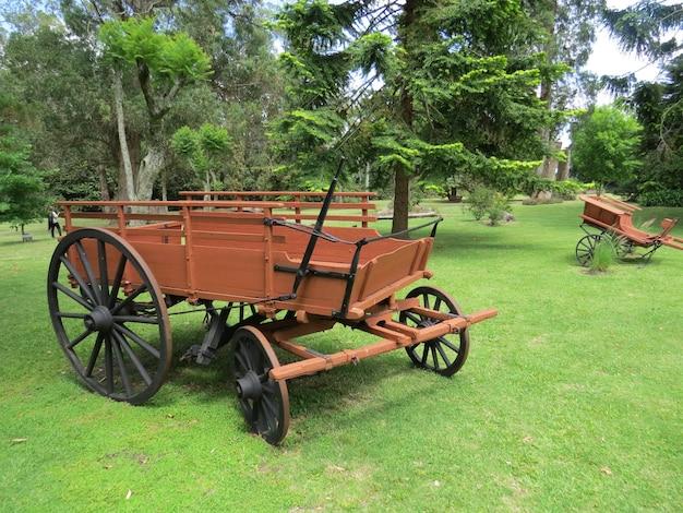 Повозка посреди зеленого сада