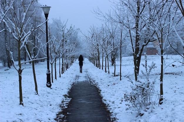 冬に公園を歩く