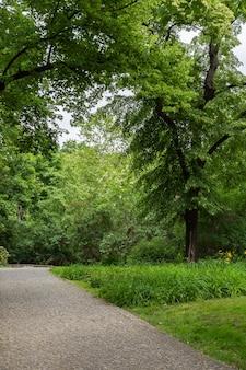 ベルリンのフォルクスパークフリードリッヒスハイン公園、居心地の良い小道、緑の芝生で暖かい晴れた日に歩きます